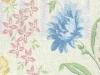 meyer-whitman-cornflower