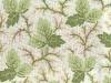 meyer-whitehill-spearmint