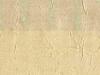 robert-allen-gibson-crinkle-mustard